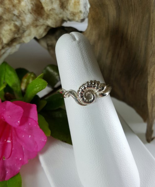 Nautilus Shell Ring Sterling silver sizes 5-8